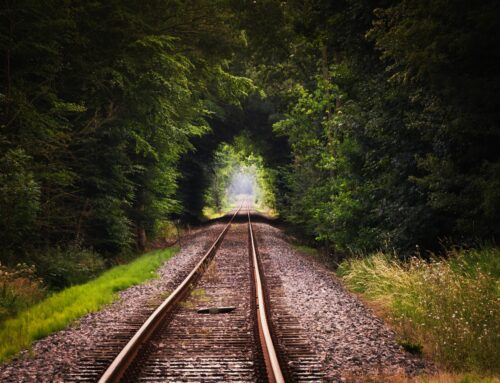 A Train Ride to the Meaning of Life
